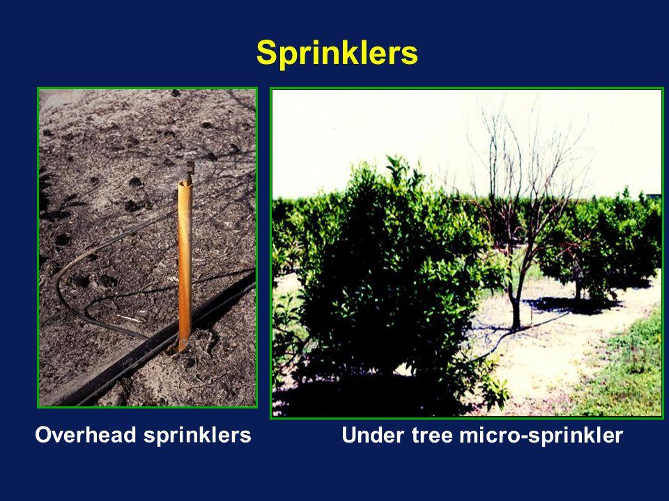 Overhead sprinklers Under tree micro-sprinkler Sprinklers