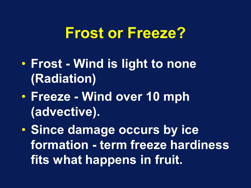 Frost or Freeze.Frost - Wind is light to none (Radiation) Freeze - Wind over 10 mph (advective).