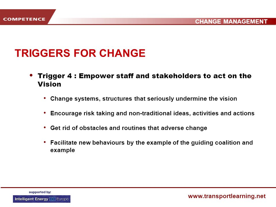 CHANGE MANAGEMENT www.transportlearning.net TRIGGERS FOR CHANGE Trigger 3: Create a Vision and Strategy Create a vision to help direct the change effort Develop strategies for achieving that vision Define demonstrative actions