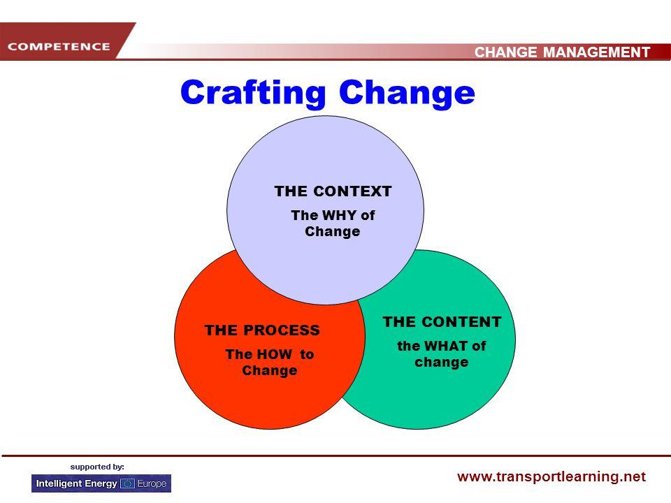 CHANGE MANAGEMENT www.transportlearning.net WRAP UP Change management involves both generating and directing the needed changes in an organisation and mastering the drivers / dynamics of change by organizing, implementing and supporting the triggers for change