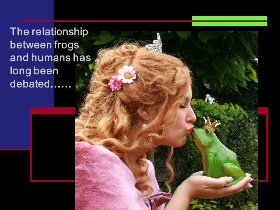 The relationship between frogs and humans has long been debated ……