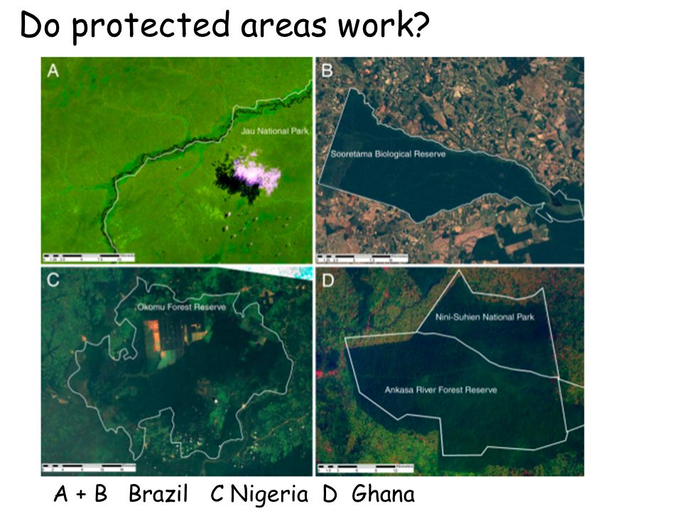 Do protected areas work? A + B Brazil C Nigeria D Ghana
