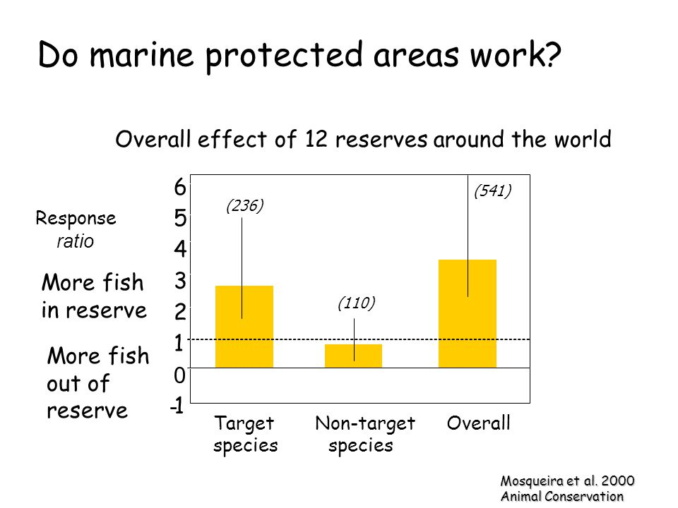 Do marine protected areas work? Mosqueira et al. 2000 Animal Conservation (236) Target species 6 5 4 3 2 1 0 - 1 (110) Non-target species Overall (541
