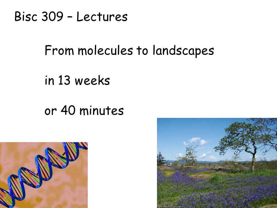 Bisc 309 – Lectures From molecules to landscapes in 13 weeks or 40 minutes