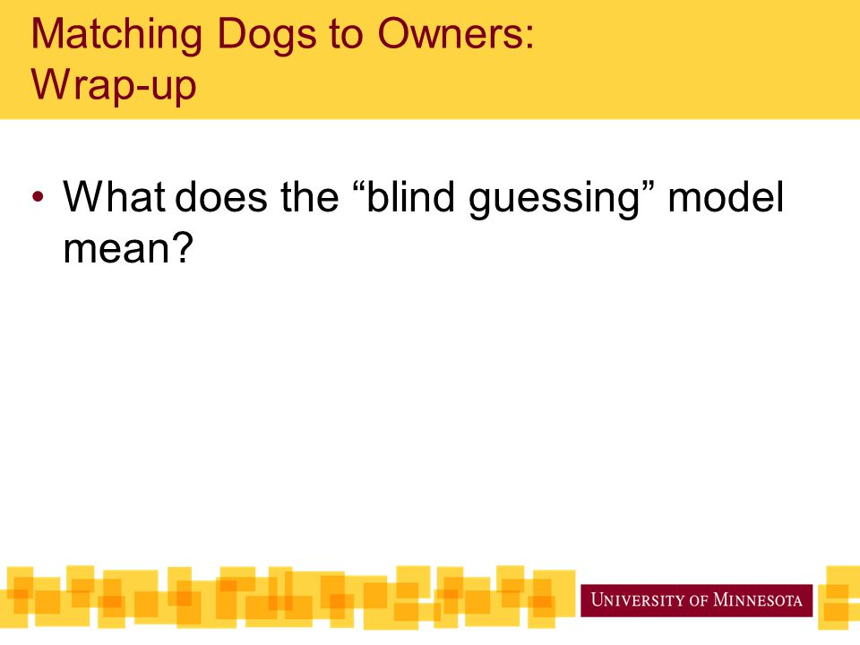 """Matching Dogs to Owners: Wrap-up What does the """"blind guessing"""" model mean?"""