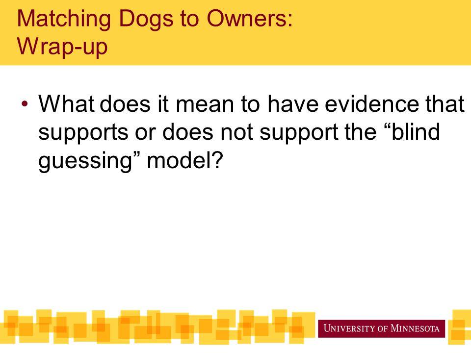 """Matching Dogs to Owners: Wrap-up What does it mean to have evidence that supports or does not support the """"blind guessing"""" model?"""