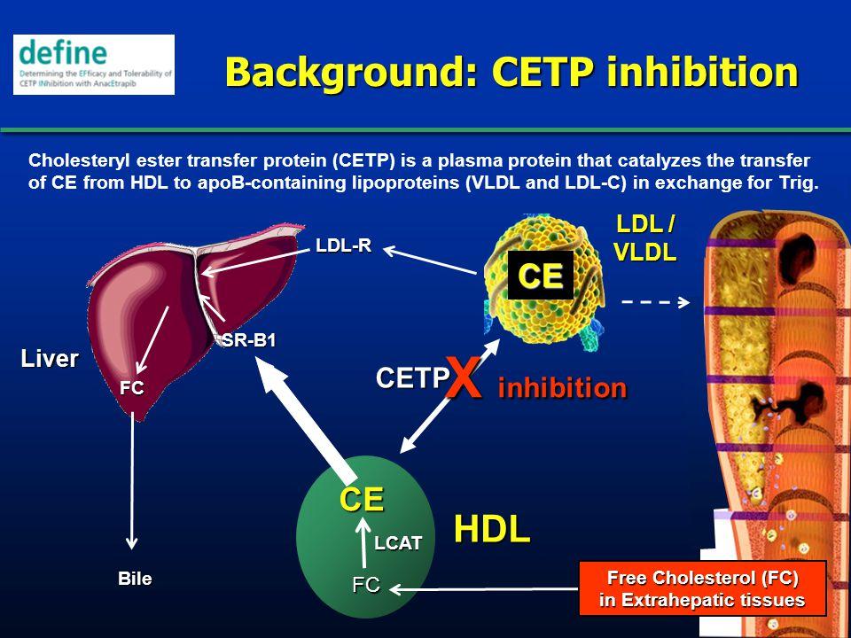 Background: CETP inhibition HDL LDL / VLDL Liver Bile CE LDL-R FC FC LCAT CETP CE SR-B1 X inhibition Cholesteryl ester transfer protein (CETP) is a pl