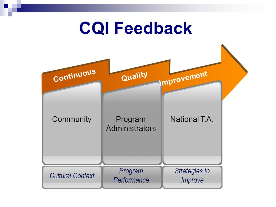 National T.A.CommunityProgram Administrators Improvement Continuous Quality Strategies to Improve Cultural Context Program Performance CQI Feedback