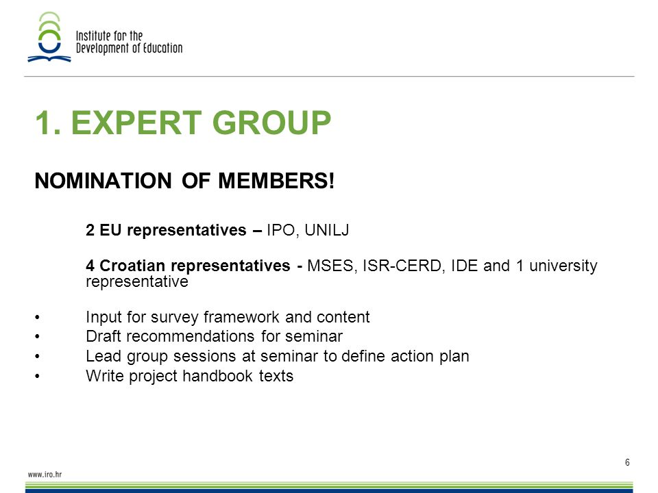 6 1. EXPERT GROUP NOMINATION OF MEMBERS.
