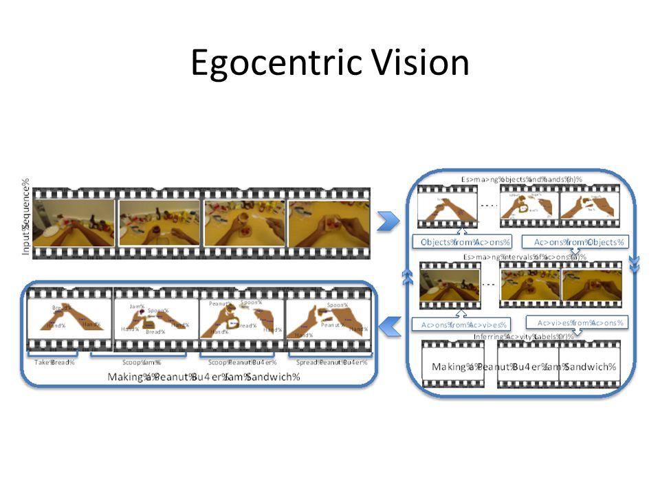 Egocentric Vision