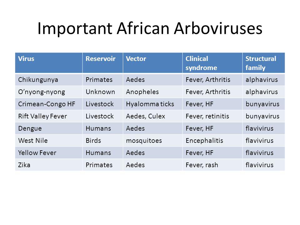 Important African Arboviruses VirusReservoirVectorClinical syndrome Structural family ChikungunyaPrimatesAedesFever, Arthritisalphavirus O'nyong-nyongUnknownAnophelesFever, Arthritisalphavirus Crimean-Congo HFLivestockHyalomma ticksFever, HFbunyavirus Rift Valley FeverLivestockAedes, CulexFever, retinitisbunyavirus DengueHumansAedesFever, HFflavivirus West NileBirdsmosquitoesEncephalitisflavivirus Yellow FeverHumansAedesFever, HFflavivirus ZikaPrimatesAedesFever, rashflavivirus