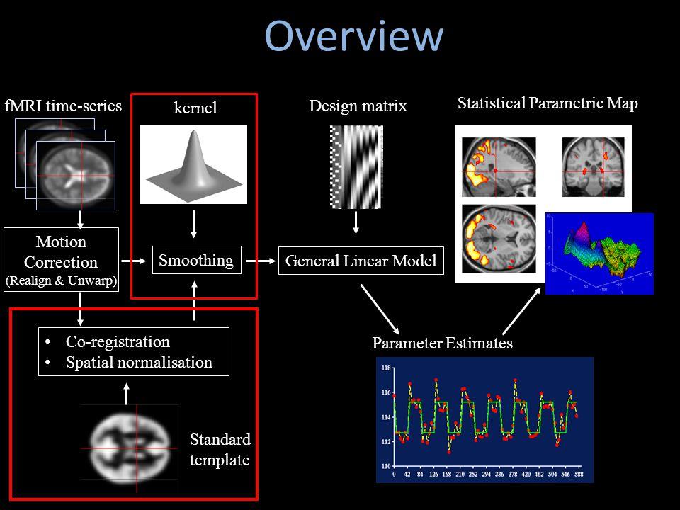 Motion Correction (Realign & Unwarp) Smoothing kernel Co-registration Spatial normalisation Standard template fMRI time-series Statistical Parametric