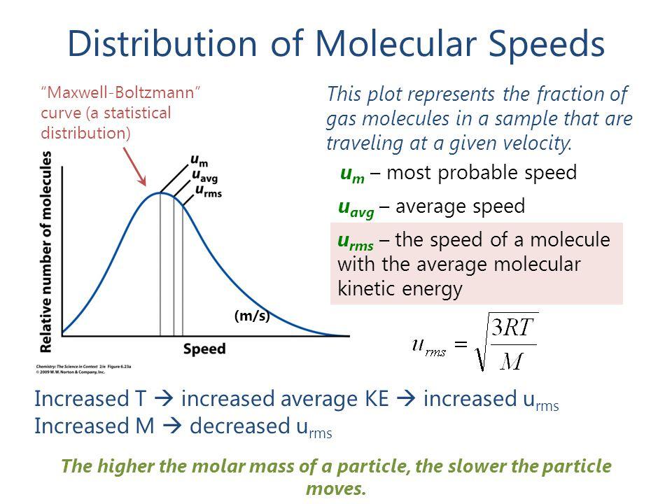 "Distribution of Molecular Speeds ""Maxwell-Boltzmann"" curve (a statistical distribution) u m – most probable speed u avg – average speed u rms – the sp"