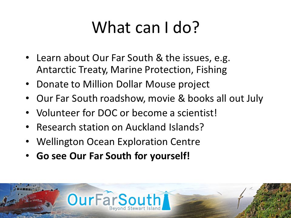 What can I do? Learn about Our Far South & the issues, e.g. Antarctic Treaty, Marine Protection, Fishing Donate to Million Dollar Mouse project Our Fa