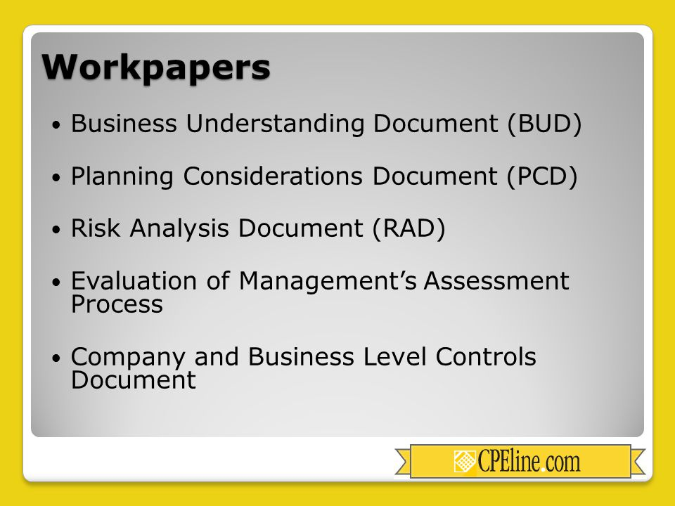 Workpapers Business Understanding Document (BUD) Planning Considerations Document (PCD) Risk Analysis Document (RAD) Evaluation of Management's Assessment Process Company and Business Level Controls Document