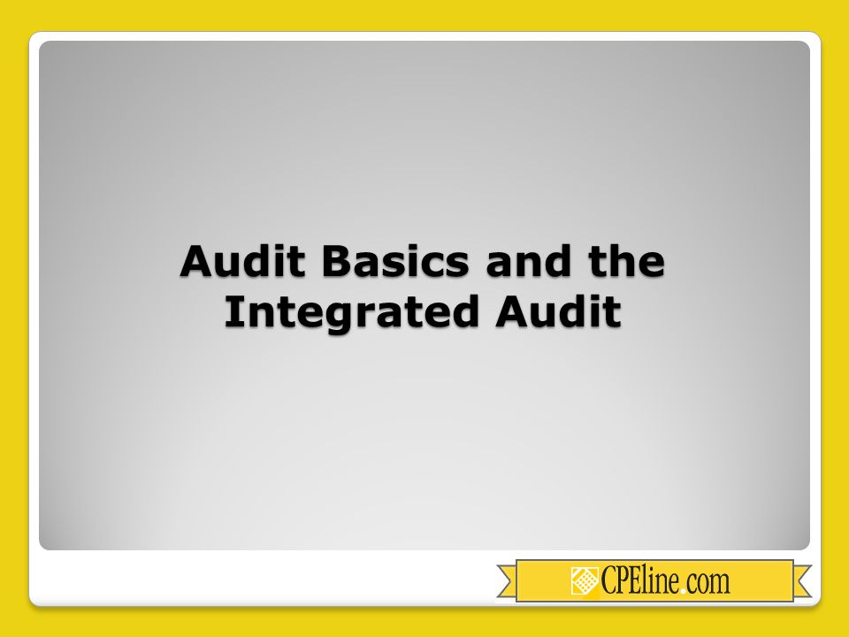 Audit Basics and the Integrated Audit