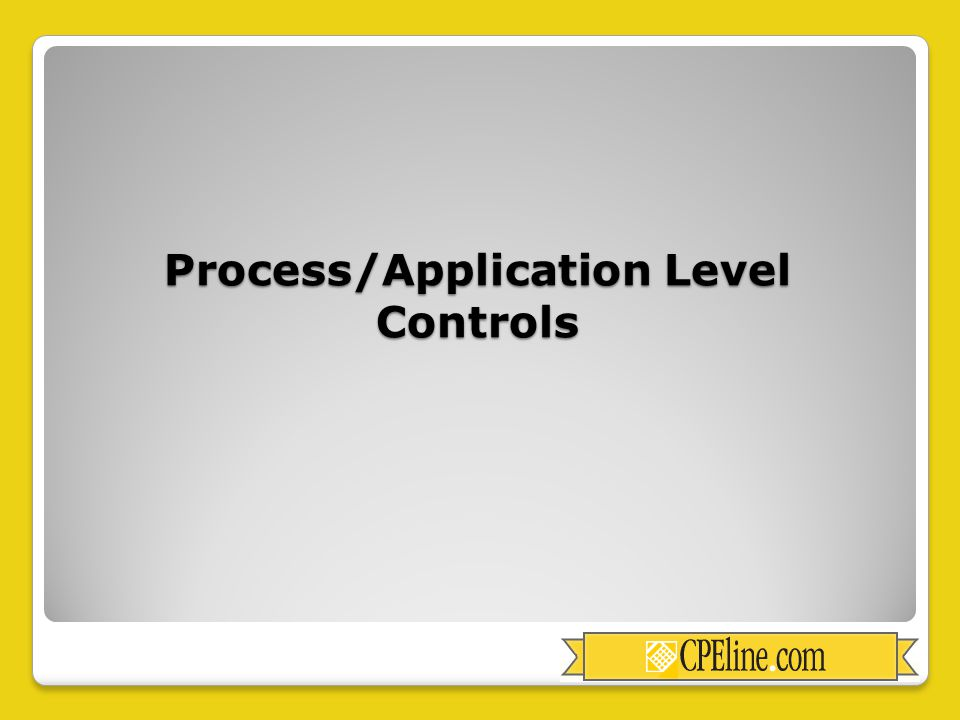 Process/Application Level Controls