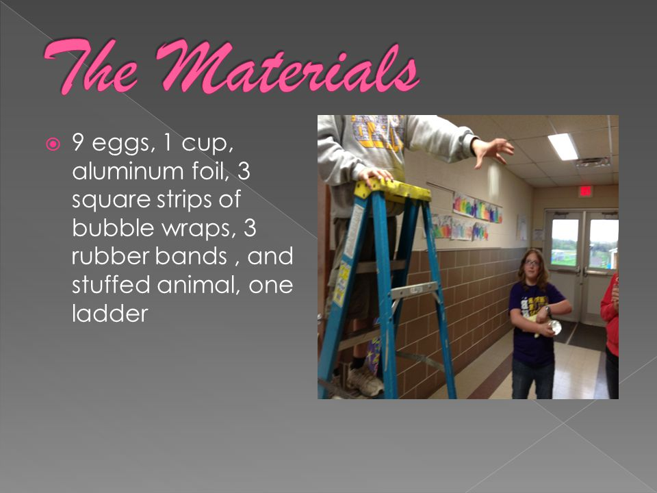 9 eggs, 1 cup, aluminum foil, 3 square strips of bubble wraps, 3 rubber bands, and stuffed animal, one ladder