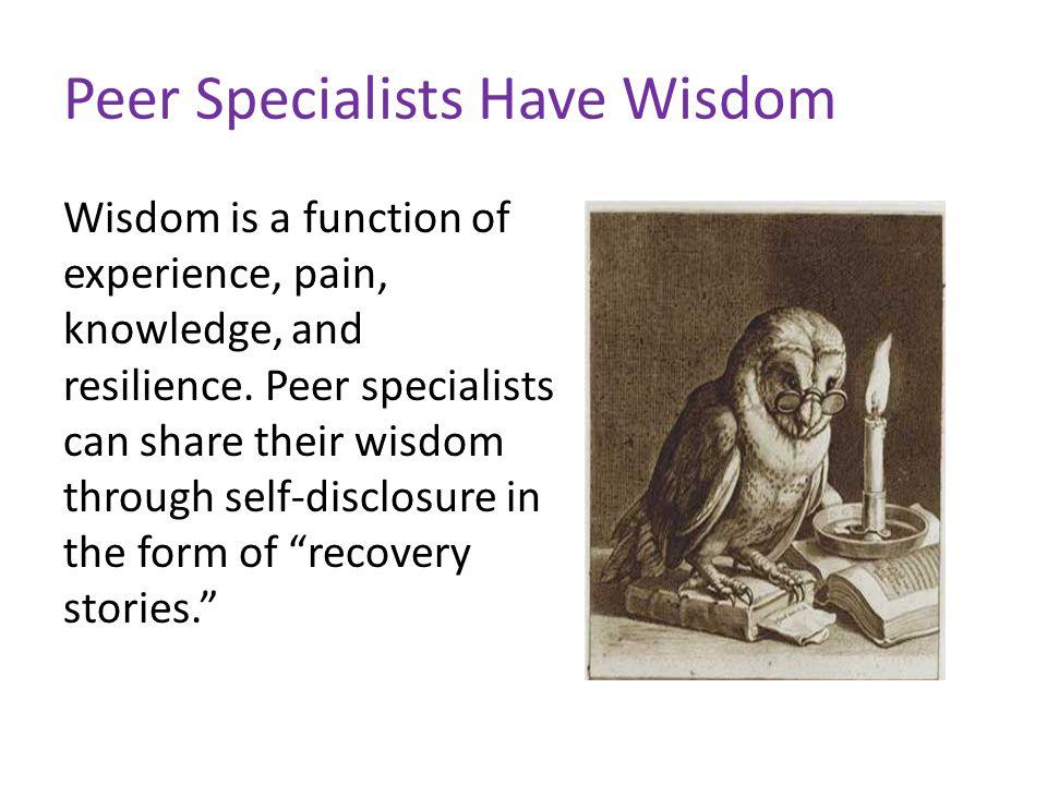 Recovery Pathways Spirituality Hope Recovery environment Empowerment Choice ----Ashcraft, Zeeb, & Martin, 2007