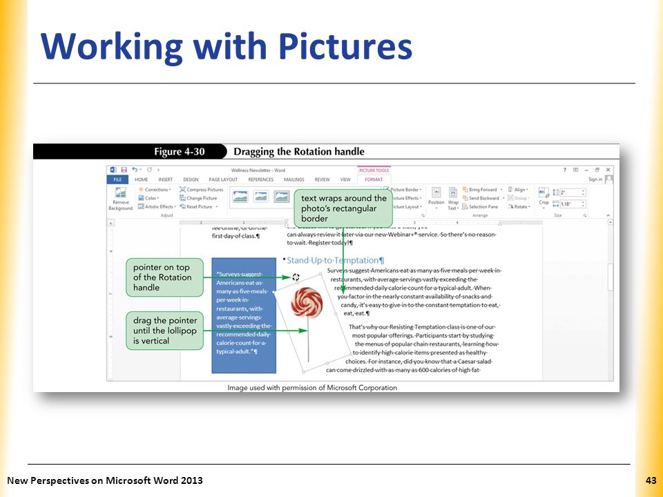 XP Working with Pictures New Perspectives on Microsoft Word 201343