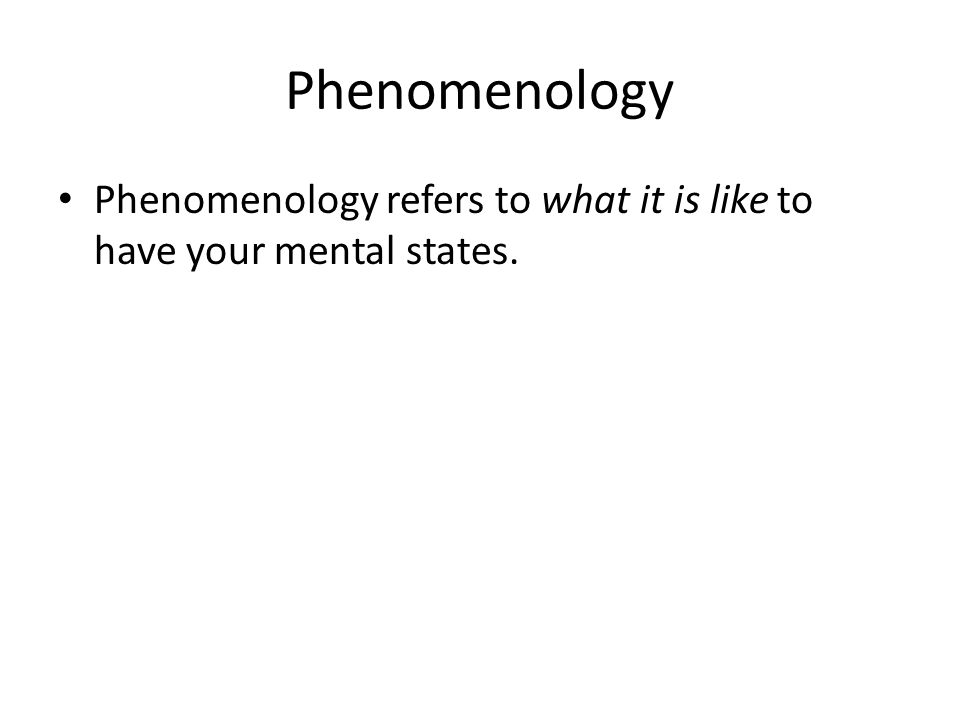 Phenomenology Phenomenology refers to what it is like to have your mental states.