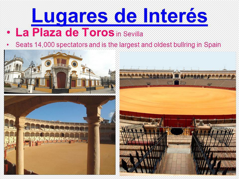 Lugares de Interés La Plaza de Toros in Sevilla Seats 14,000 spectators and is the largest and oldest bullring in Spain