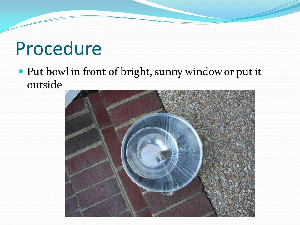 Procedure Put bowl in front of bright, sunny window or put it outside