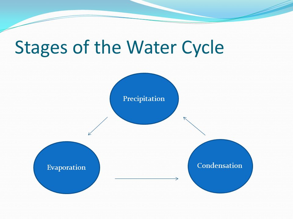 Evaporation happens when the sun heats up the liquid water, soaks it up into the air, and turns the water into a gas.
