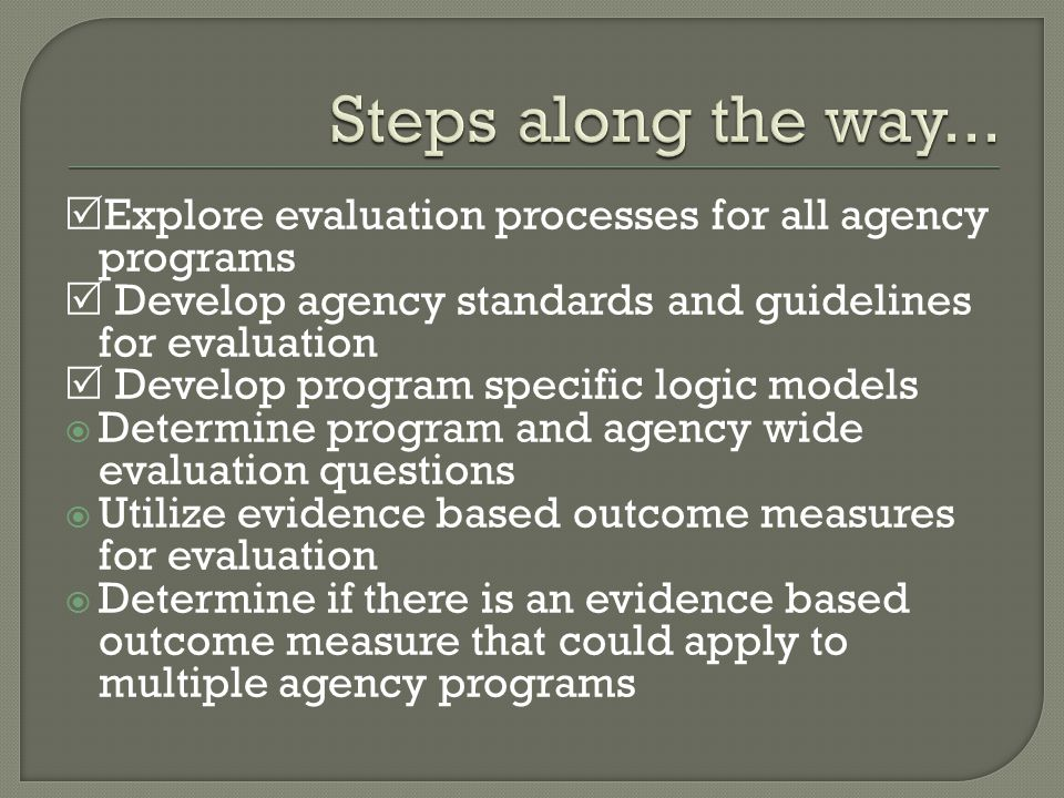  Explore evaluation processes for all agency programs  Develop agency standards and guidelines for evaluation  Develop program specific logic models  Determine program and agency wide evaluation questions  Utilize evidence based outcome measures for evaluation  Determine if there is an evidence based outcome measure that could apply to multiple agency programs