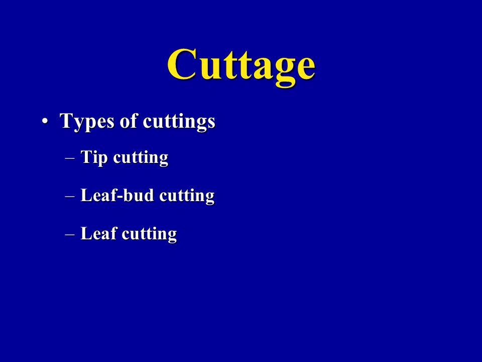 Cuttage Types of cuttingsTypes of cuttings –Tip cutting –Leaf-bud cutting –Leaf cutting