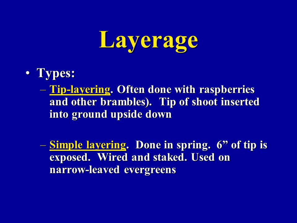 Layerage Types:Types: –Tip-layering. Often done with raspberries and other brambles).