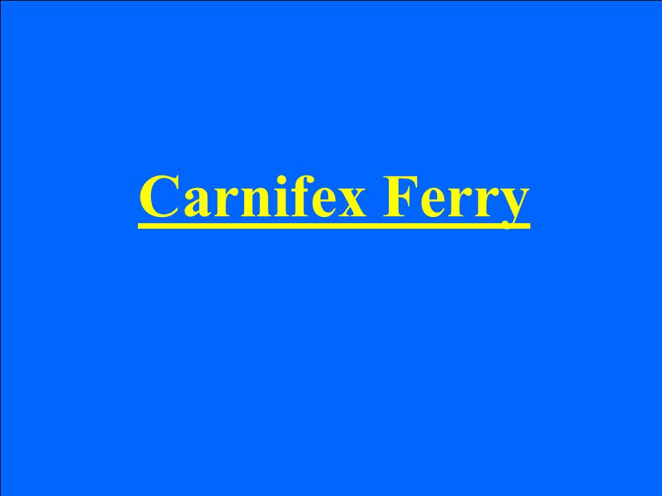 Carnifex Ferry