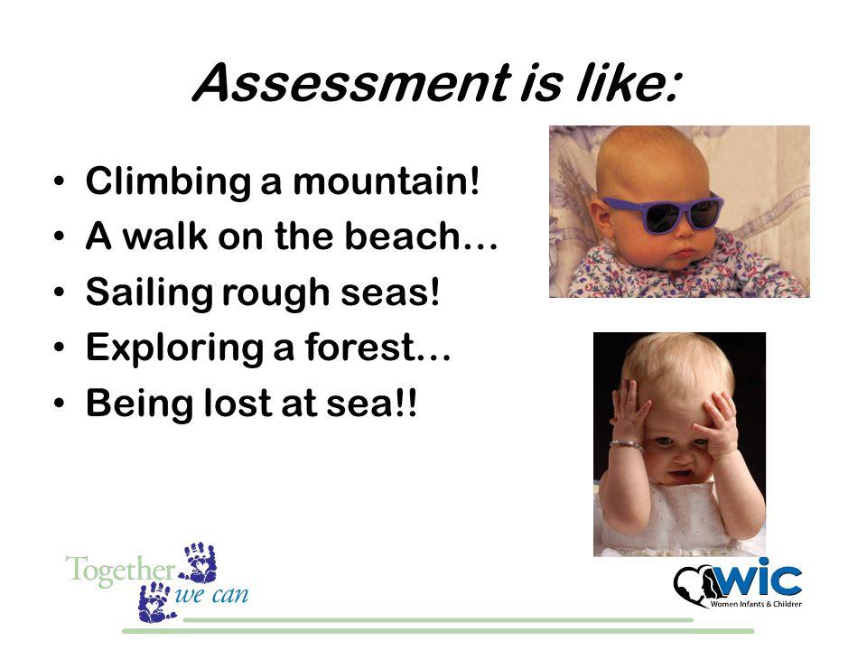 Assessment is like: Climbing a mountain. A walk on the beach… Sailing rough seas.