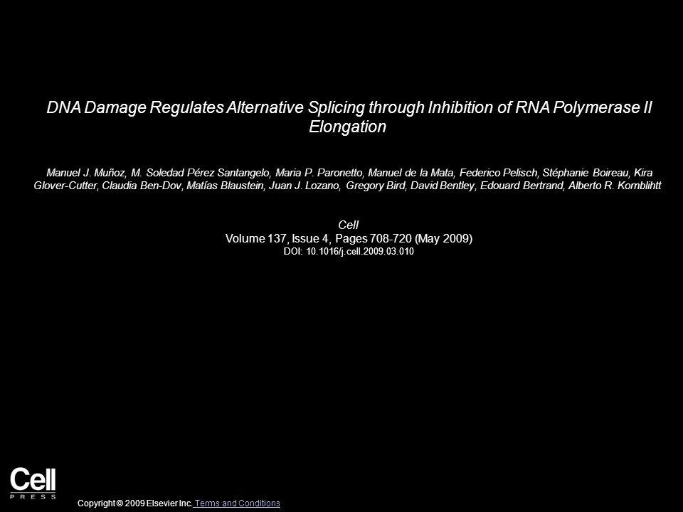 DNA Damage Regulates Alternative Splicing through Inhibition of RNA Polymerase II Elongation Manuel J.