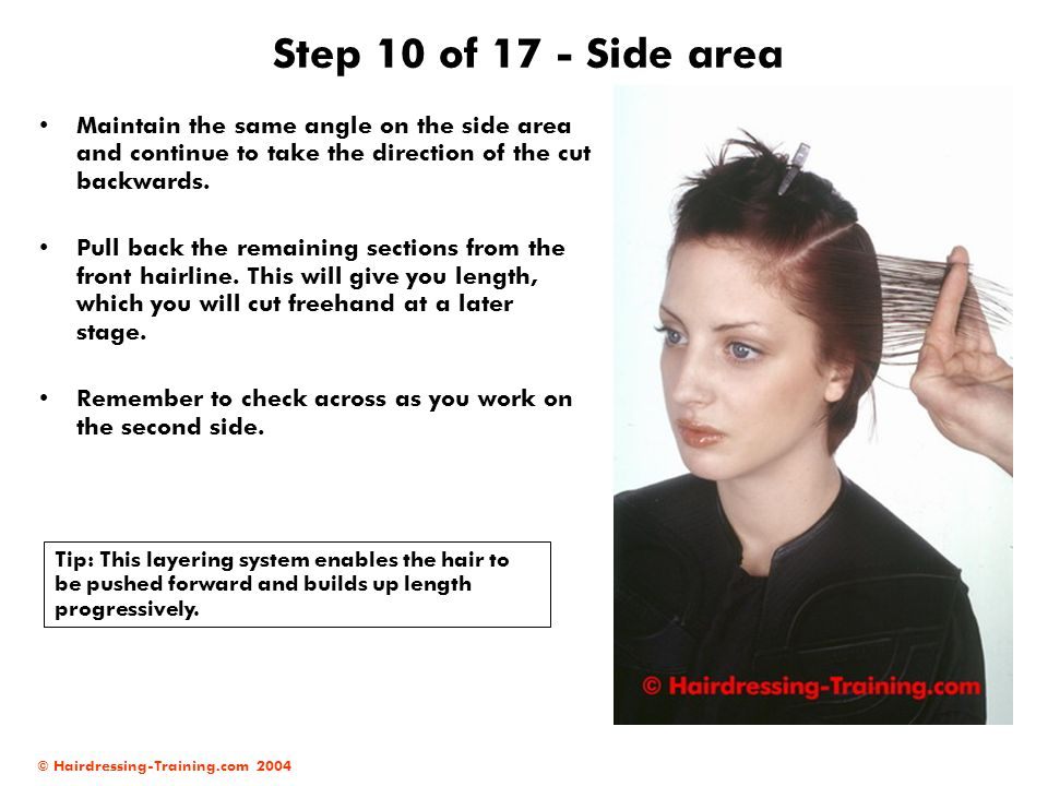 © Hairdressing-Training.com 2004 Step 10 of 17 - Side area Maintain the same angle on the side area and continue to take the direction of the cut back