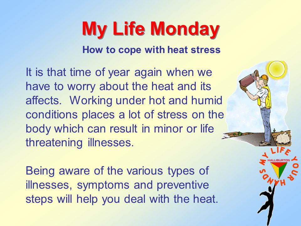 My Life Monday How to cope with heat stress It is that time of year again when we have to worry about the heat and its affects.