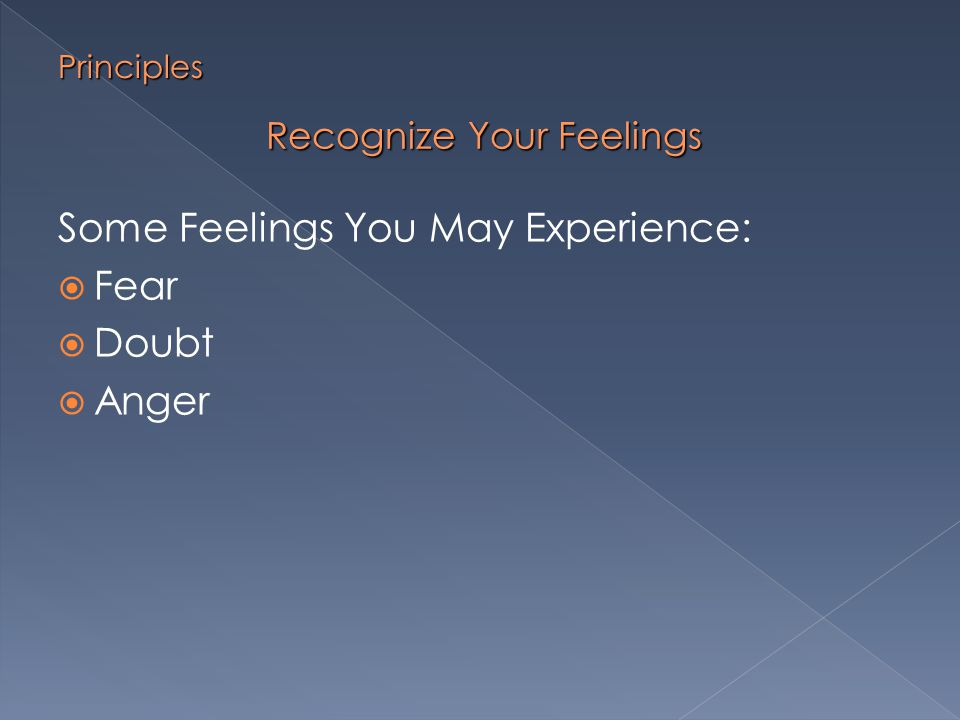 Manage Your Feelings  Prepare for the discussion  Rationalize your feelings  Talk with someone about the issue at hand Principles