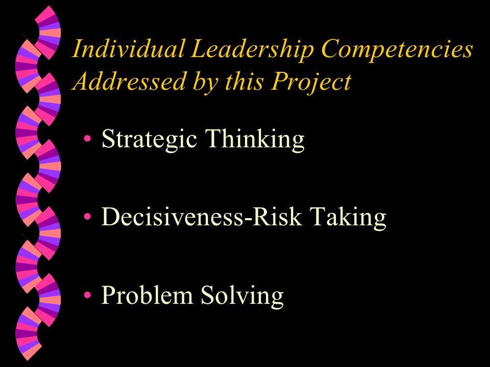Individual Leadership Competencies Addressed by this Project Strategic Thinking Decisiveness-Risk Taking Problem Solving
