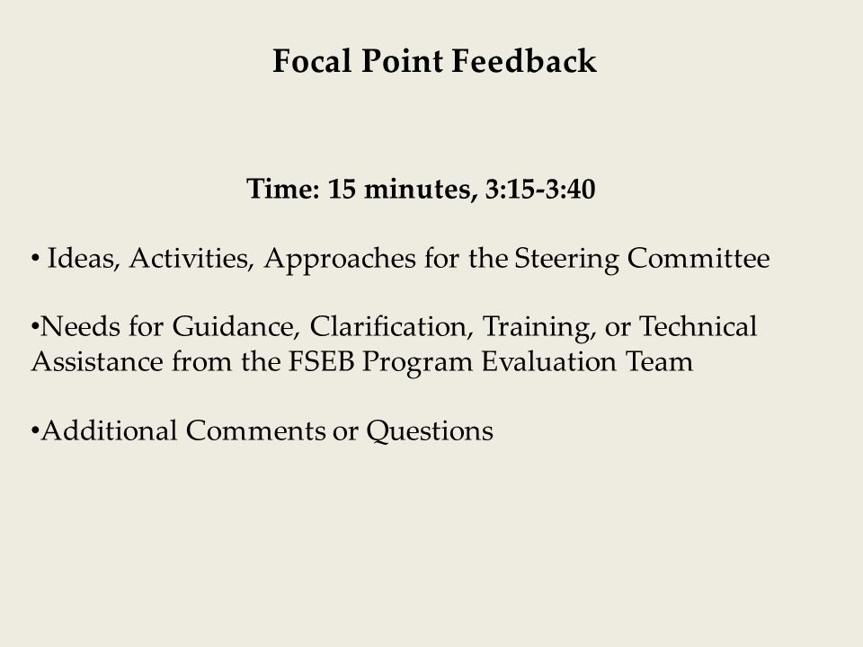 Time: 15 minutes, 3:15-3:40 Ideas, Activities, Approaches for the Steering Committee Needs for Guidance, Clarification, Training, or Technical Assistance from the FSEB Program Evaluation Team Additional Comments or Questions