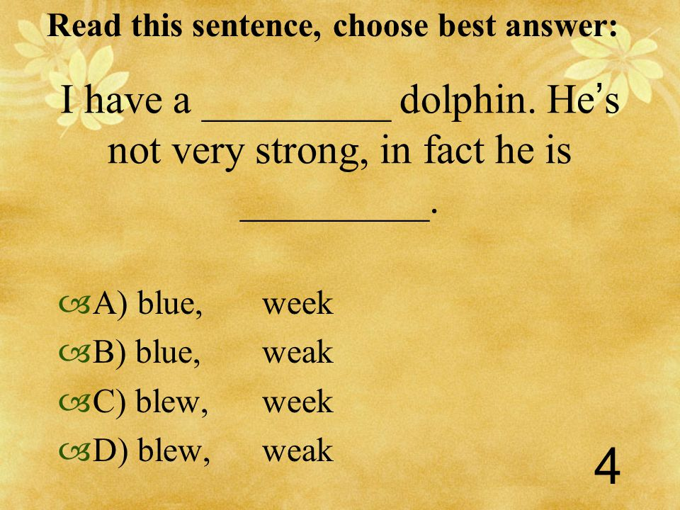 Read this sentence, choose best answer: 4 I have a _________ dolphin.