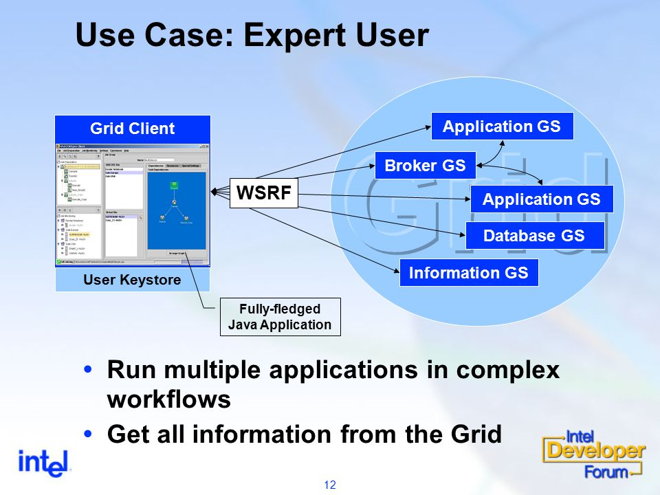 12 Use Case: Expert User Application Grid Service User Keystore Grid Client  Run multiple applications in complex workflows  Get all information from the Grid Application GS Broker GS Information GS Application GS Database GS WSRF Fully-fledged Java Application