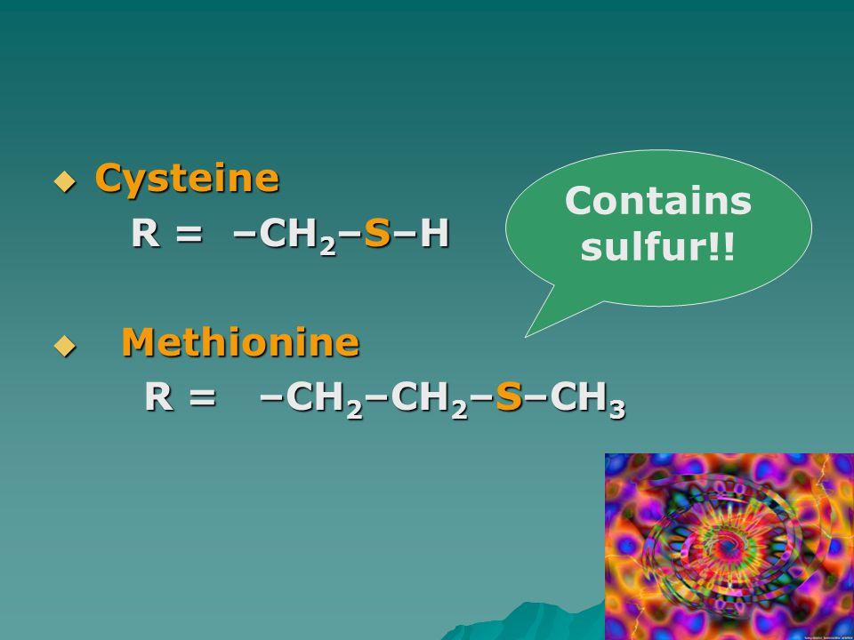  Cysteine R = –CH 2 –S–H R = –CH 2 –S–H  Methionine R = –CH 2 –CH 2 –S–CH 3 R = –CH 2 –CH 2 –S–CH 3 Contains sulfur!!