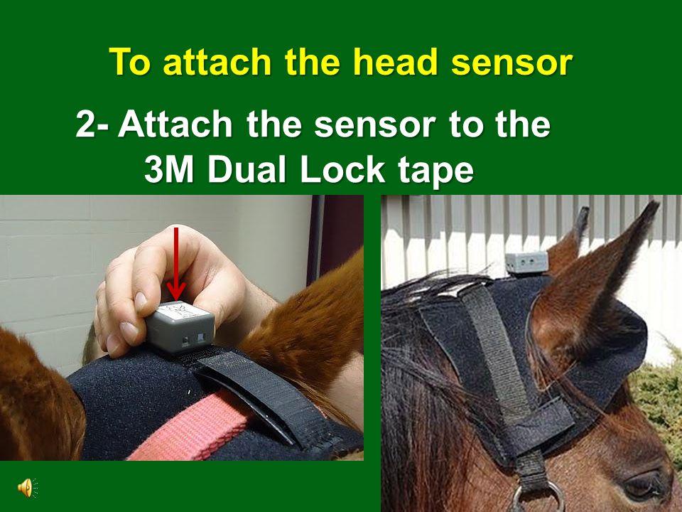 6 To attach the head sensor 1- Place the head bumper