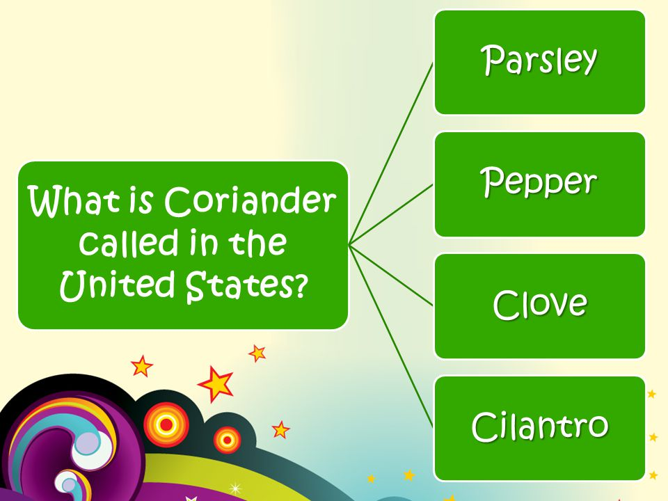 What is Coriander called in the United States Parsley Pepper Clove Cilantro