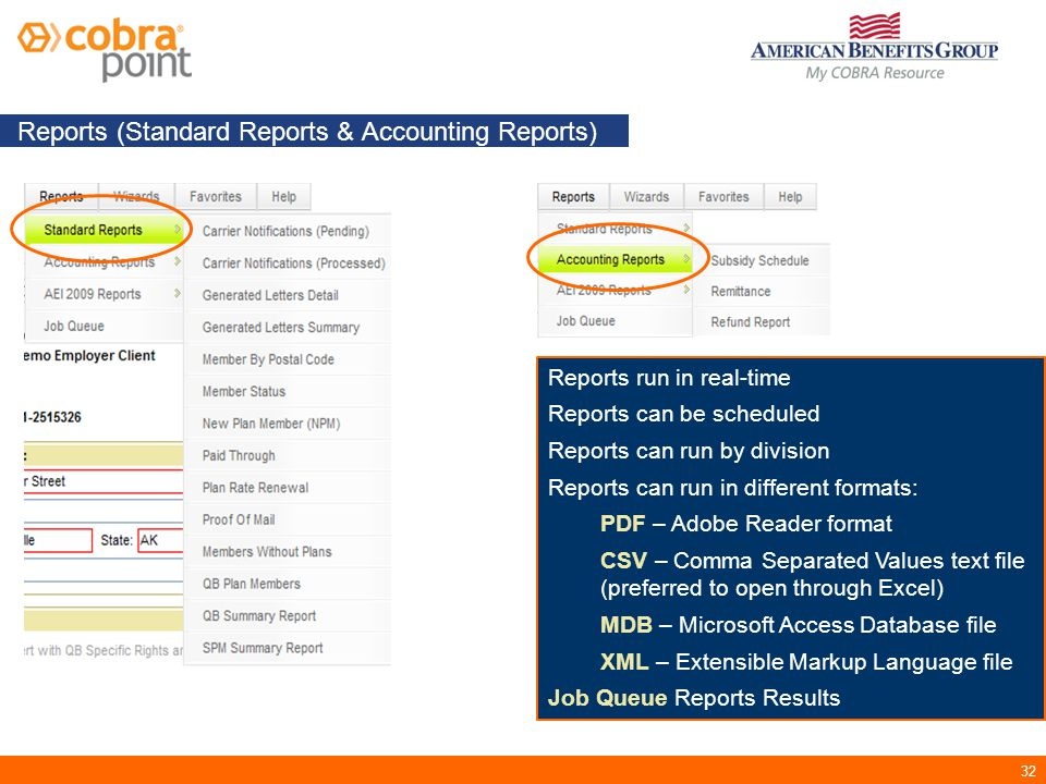 32 Reports (Standard Reports & Accounting Reports) Reports run in real-time Reports can be scheduled Reports can run by division Reports can run in different formats: PDF – Adobe Reader format CSV – Comma Separated Values text file (preferred to open through Excel) MDB – Microsoft Access Database file XML – Extensible Markup Language file Job Queue Reports Results