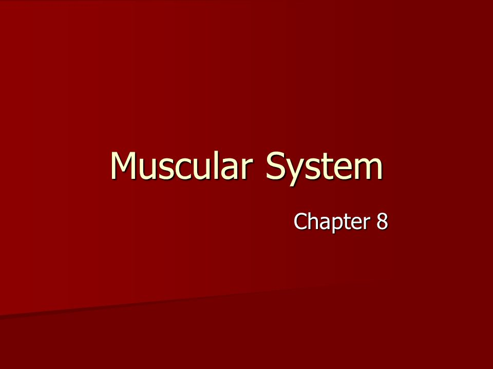 Muscular System Chapter 8