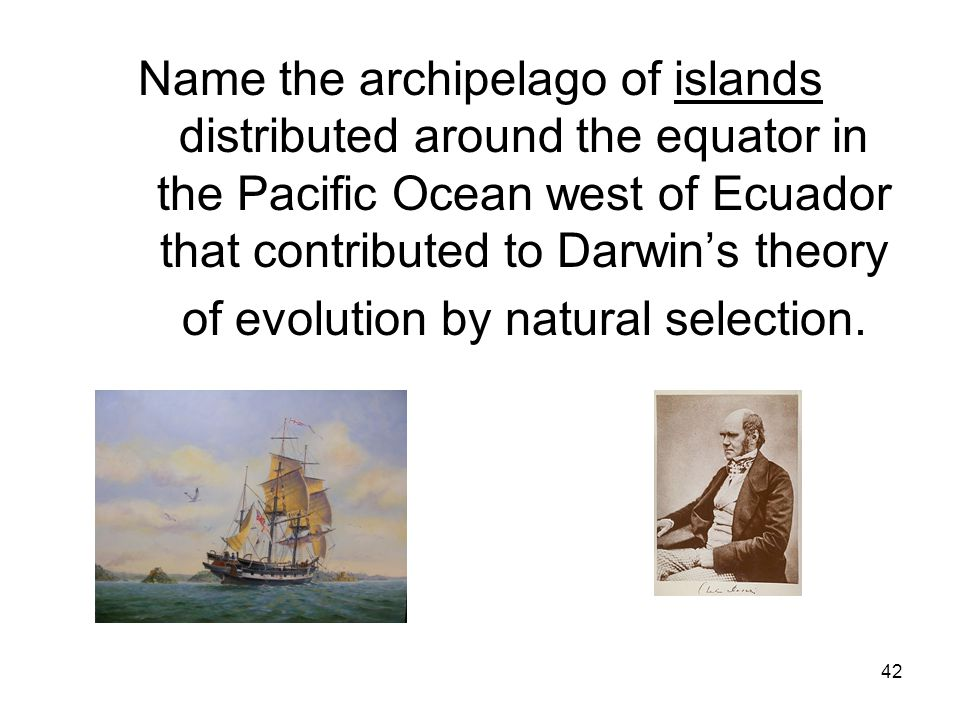 42 Name the archipelago of islands distributed around the equator in the Pacific Ocean west of Ecuador that contributed to Darwin's theory of evolution by natural selection.