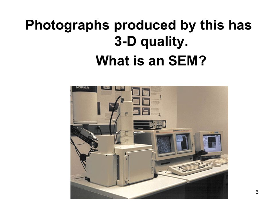 5 Photographs produced by this has 3-D quality. What is an SEM