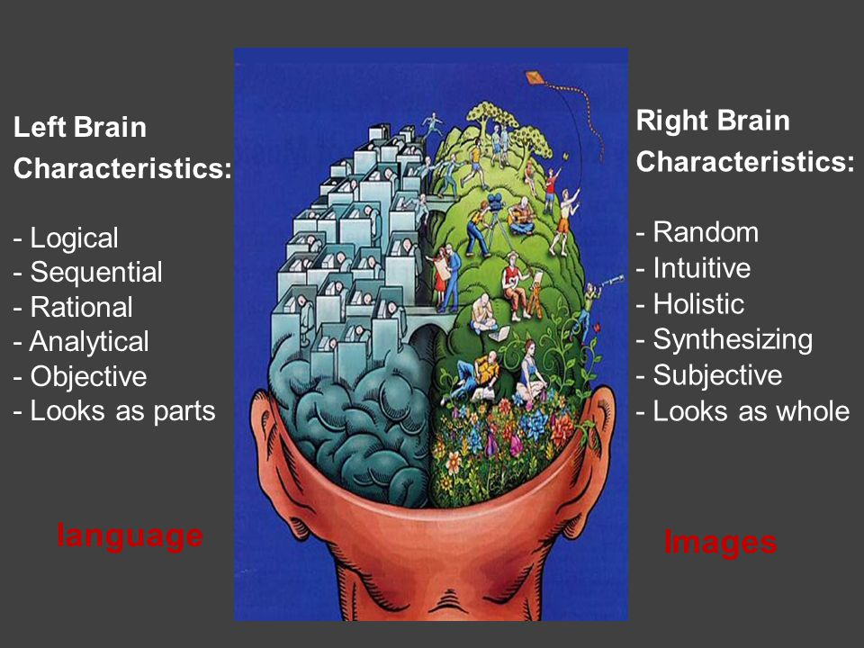 Right Brain Characteristics: - Random - Intuitive - Holistic - Synthesizing - Subjective - Looks as whole Left Brain Characteristics: - Logical - Sequential - Rational - Analytical - Objective - Looks as parts language Images