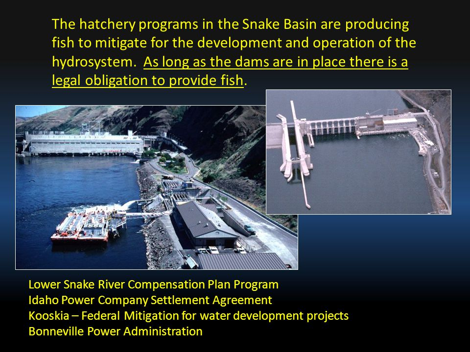 Lower Snake River Compensation Plan Program Idaho Power Company Settlement Agreement Kooskia – Federal Mitigation for water development projects Bonne